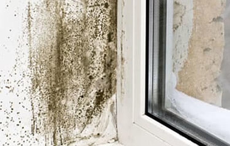 Condensatie problemen